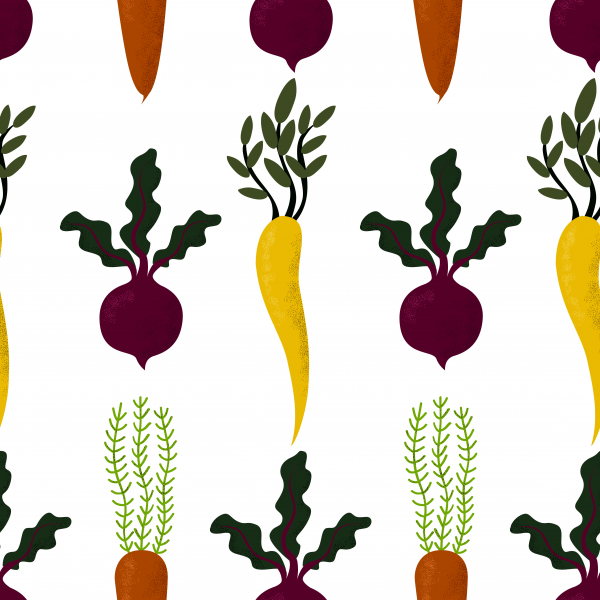 Seamless pattern of autumn vegetables. Beetroot carrot parsnip with