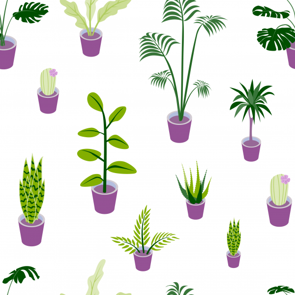 Seamless pattern of potted beautiful home plants.