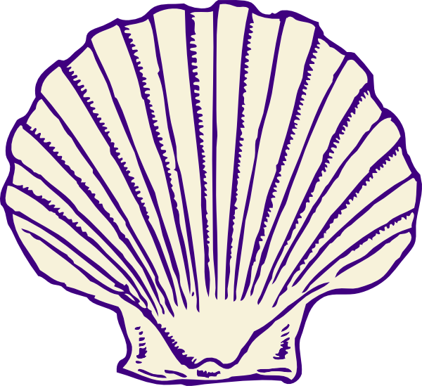 Seashell clipart png. Purple shell clip art