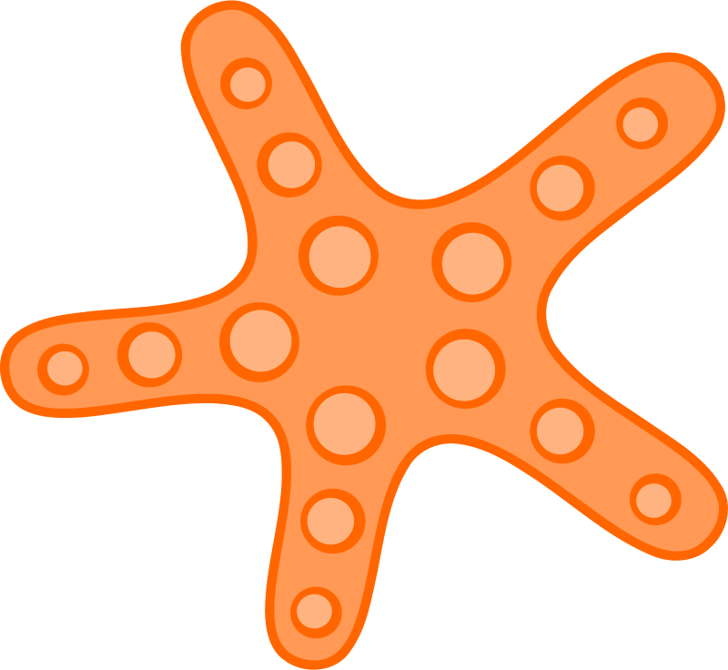 Starfish clipart simple cartoon. Free download clip art