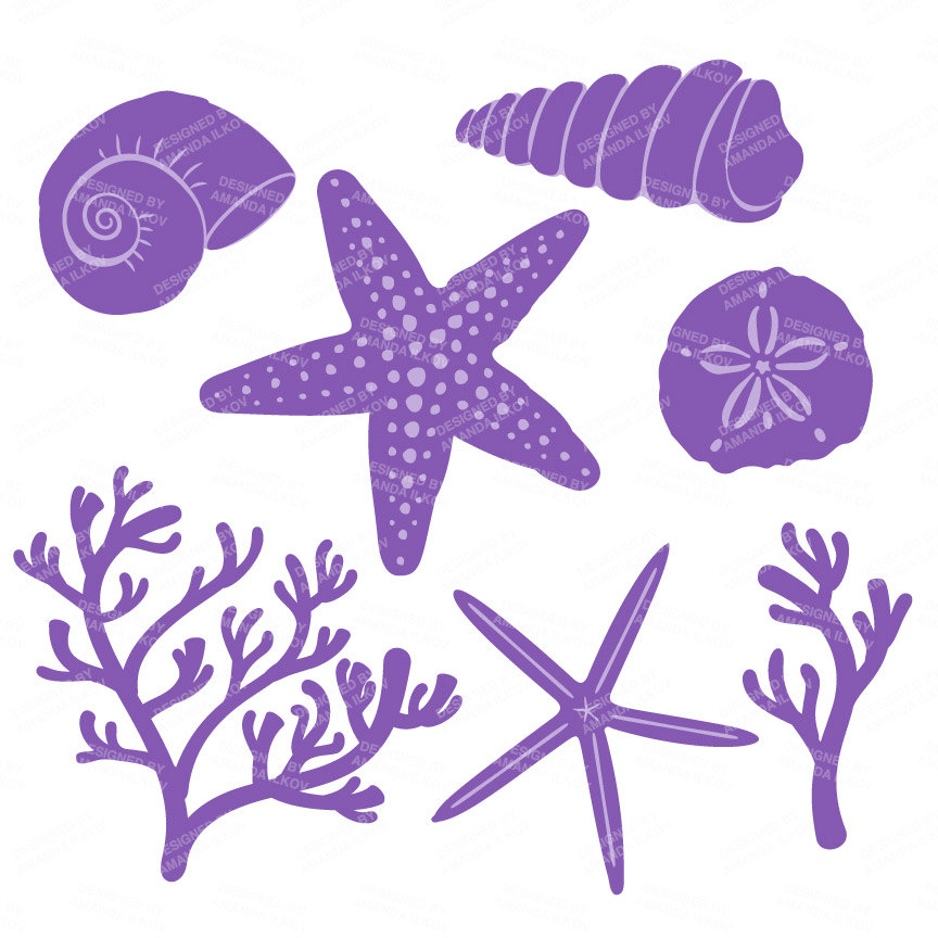 Shells clipart purple clipart. Premium vector seashells in