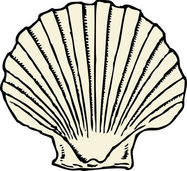 Seashell outline png. Scallop shell no color