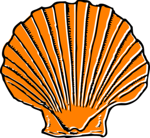 Orange clip art at. Seashell clipart clip royalty free library