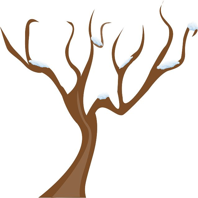 Trees clipart branch. Winter tree at getdrawings