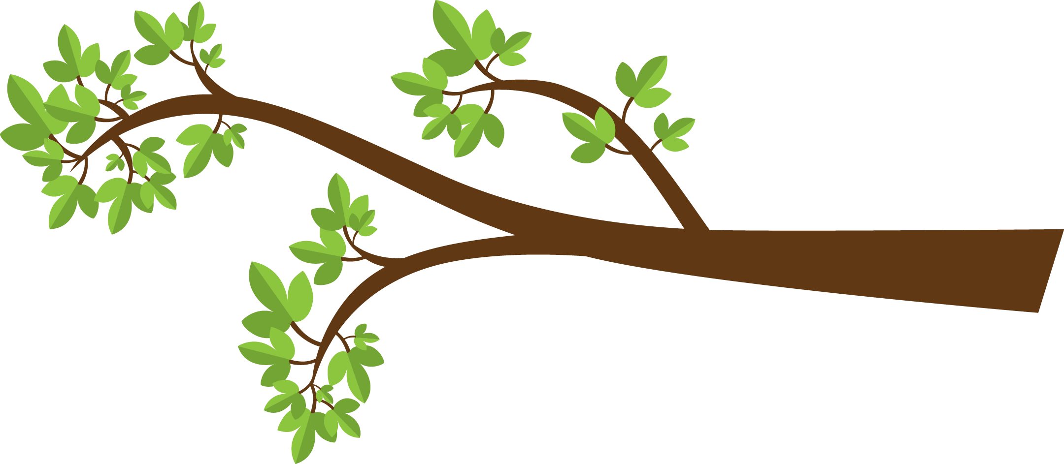 tree branch vector png