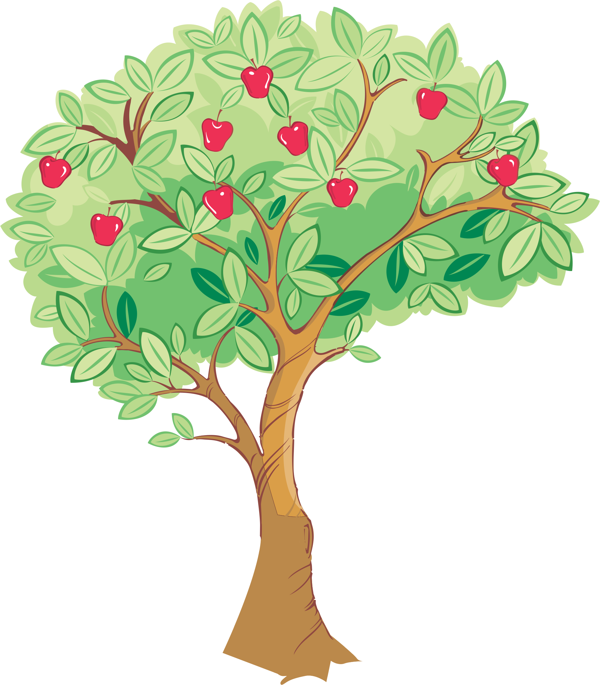 Season drawing apple tree. Green transprent png free