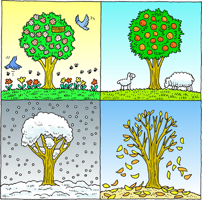 Seasons clipart png free download