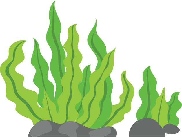 Seaweed cartoon png. Manage clipart gclipart com