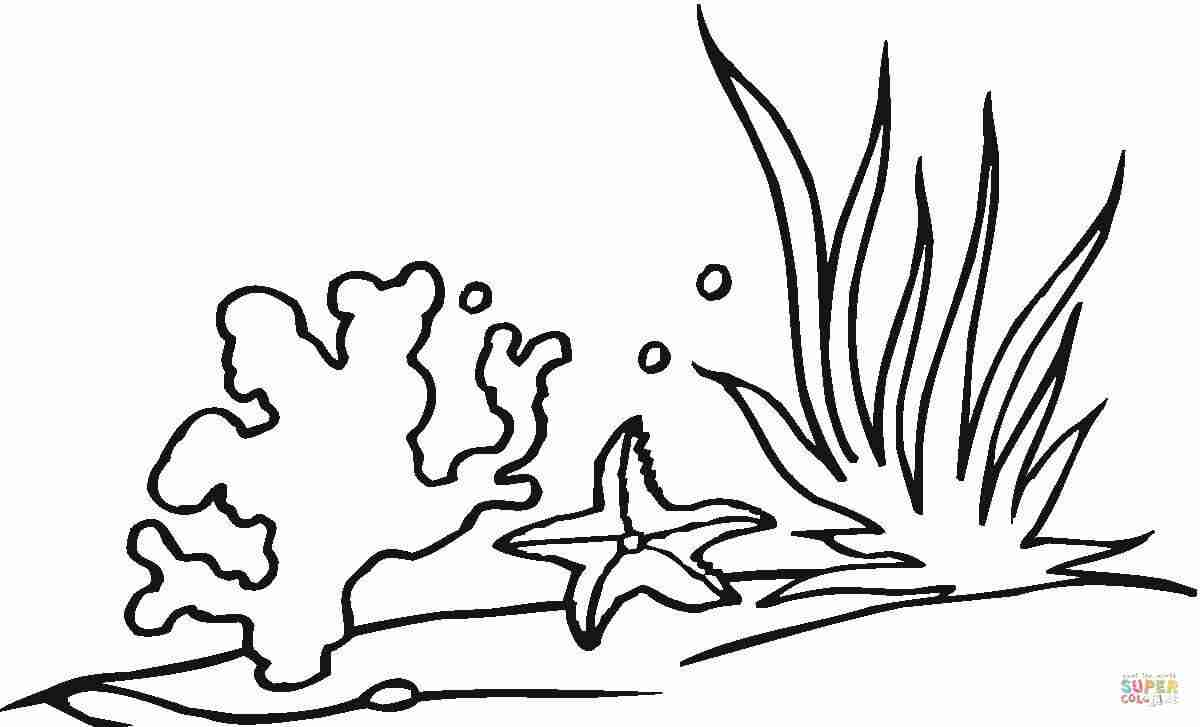 Seaweed clipart coral reef. Exciting coloring pages of