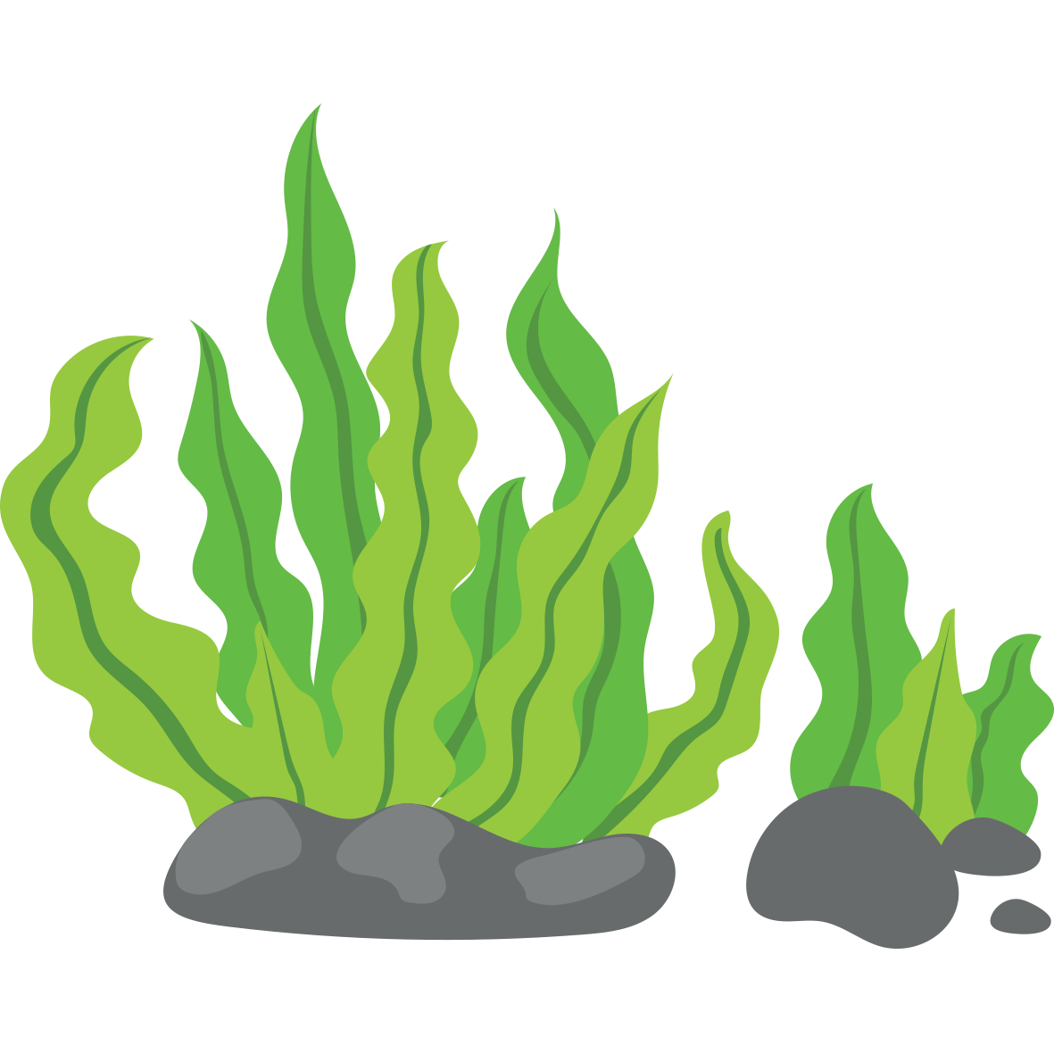 Seaweed clipart png. Clip art green background