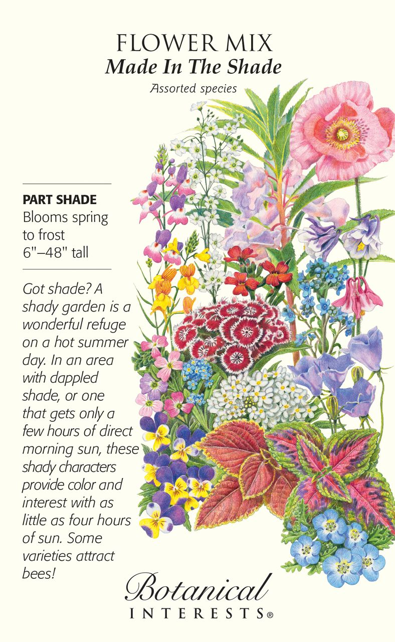 Seed clipart ground cover. Made in the shade