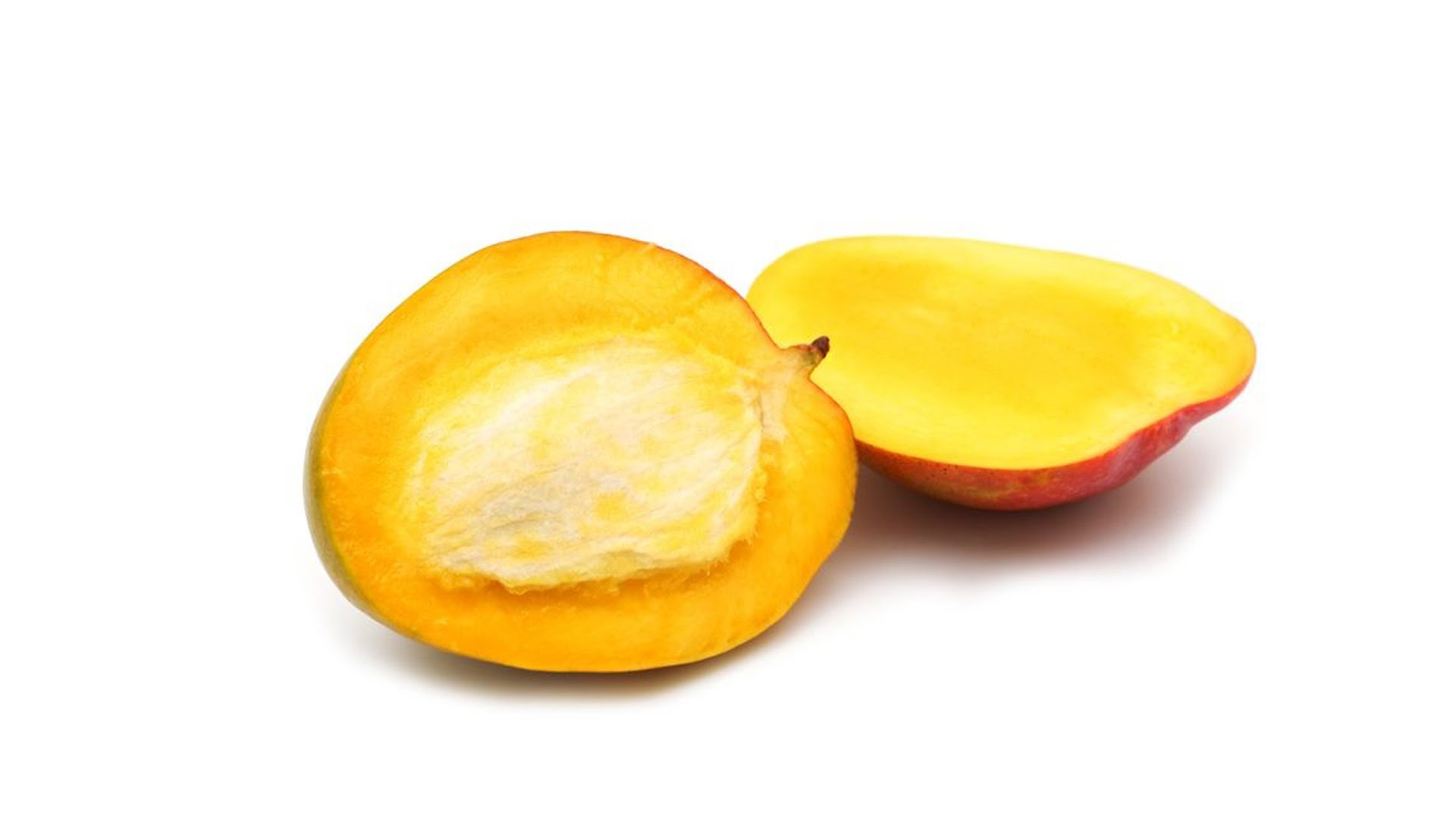 seed clipart mango seed