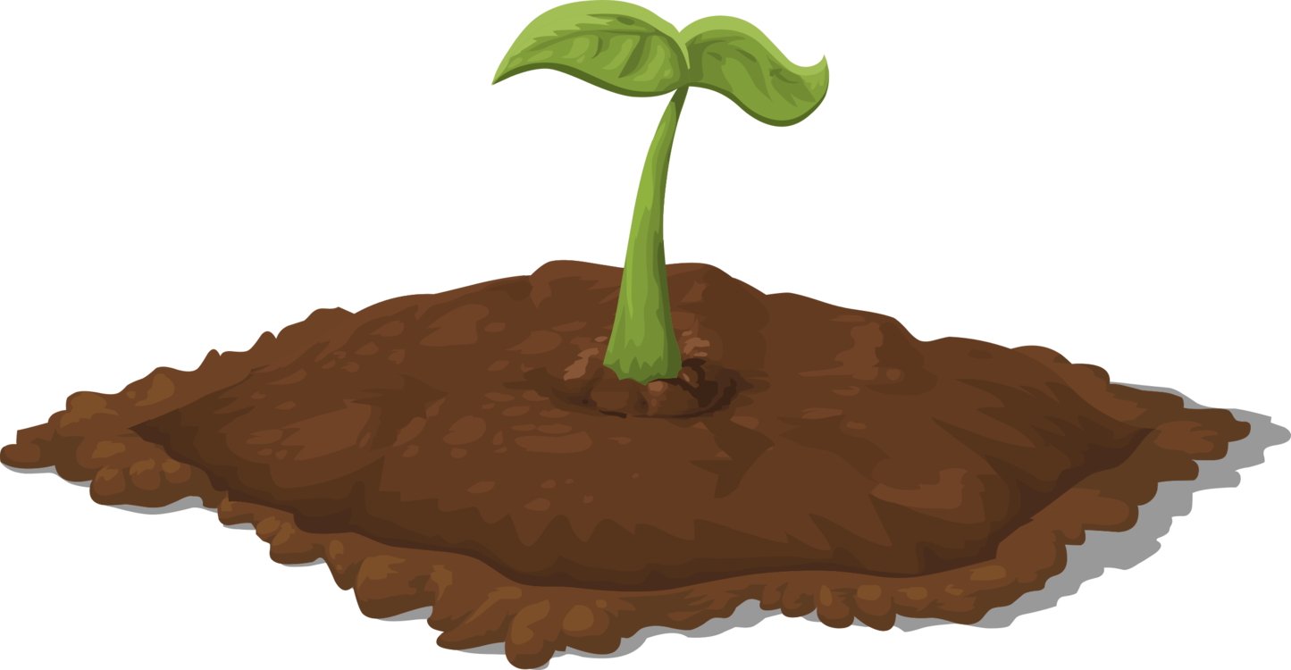 Sprout clipart leaf. Seedling sowing soil sprouting