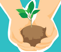 Seedling clipart land plant. Earth day clip art