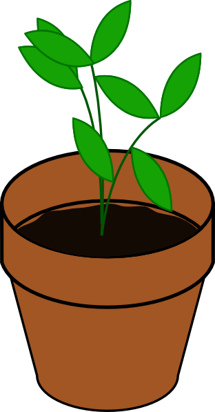 Weeds clipart animated. Seedling flower pot