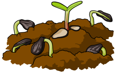 Seeds clipart soil bacteria. Smart inspiration image download