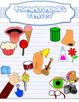 Senses clipart food smell. Five sight taste touch