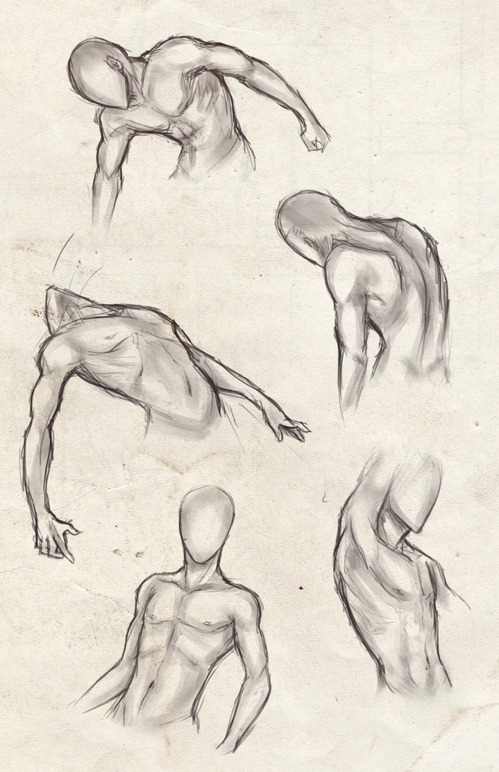 Academic drawing arm. Male torso practice by