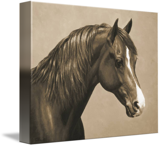 Sepia drawing horse. Chestnut morgan in by