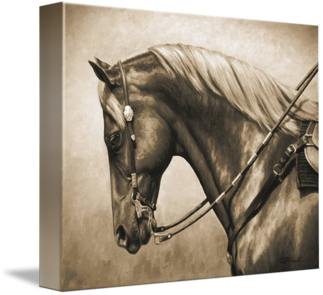 Sepia drawing horse. Western style quarter in