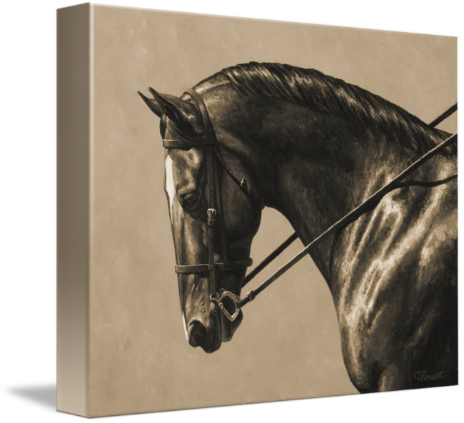 Sepia drawing horse. Brown dressage in by