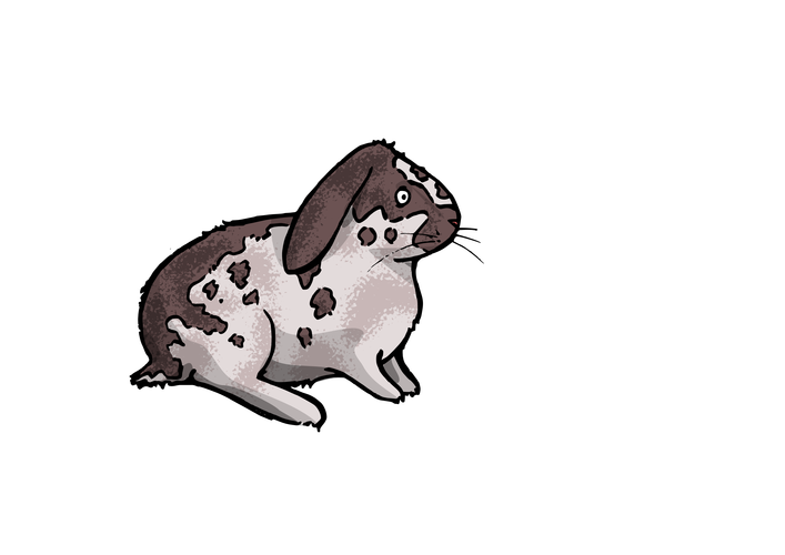 Rabbits drawing ink. Inkscape page ben lapointe