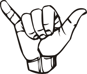 Shaka vector. Sign language y hang
