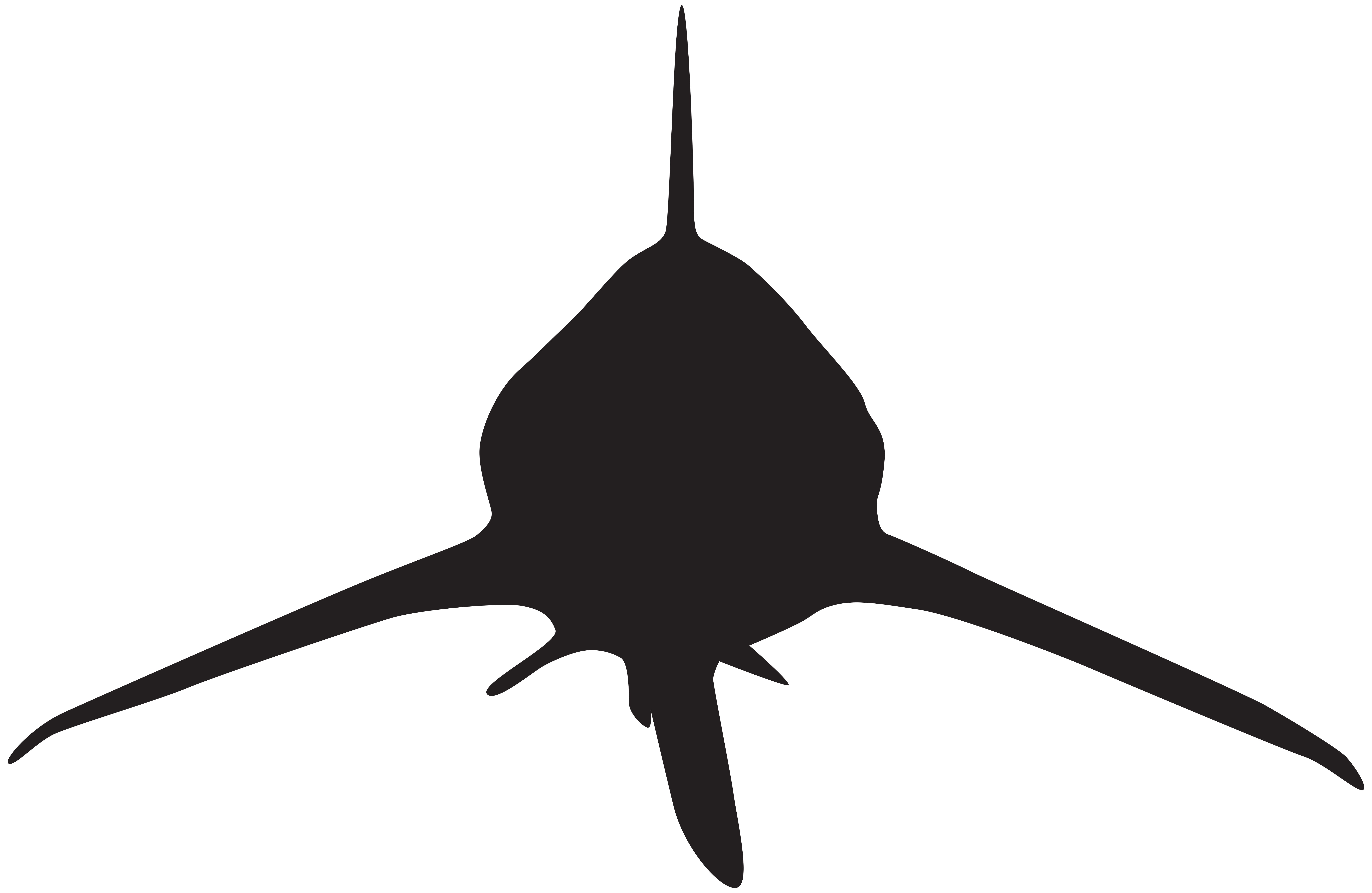 Shark attack png. Silhouette clip art image