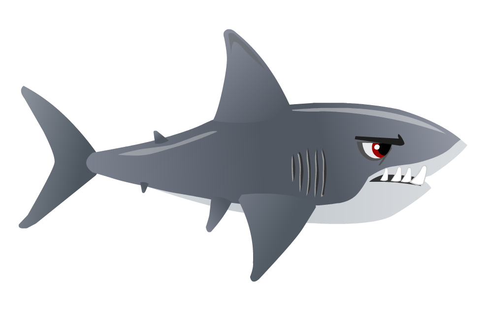 vector sharks great white shark
