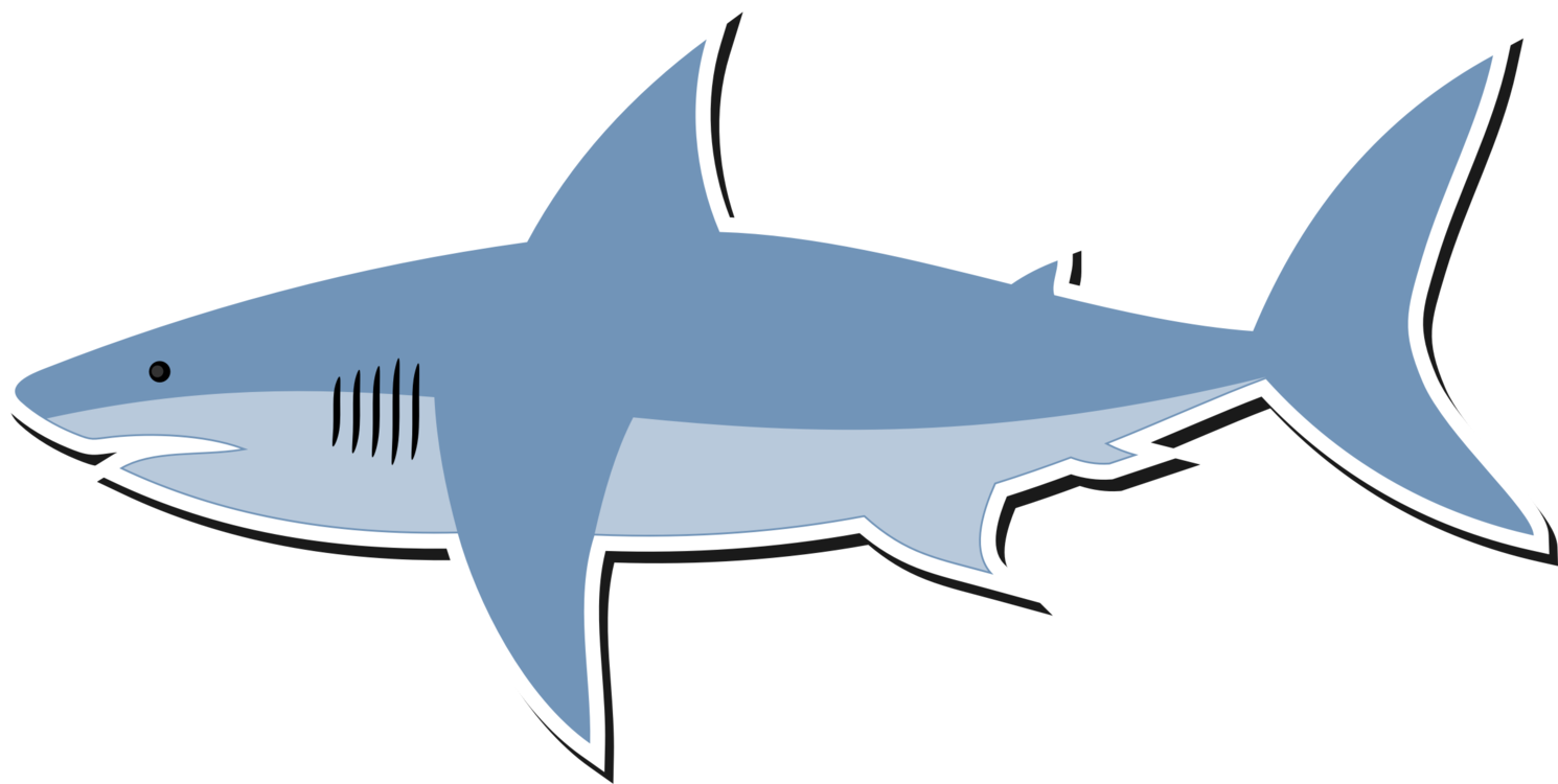 Vector sharks mascot. Great white shark bull