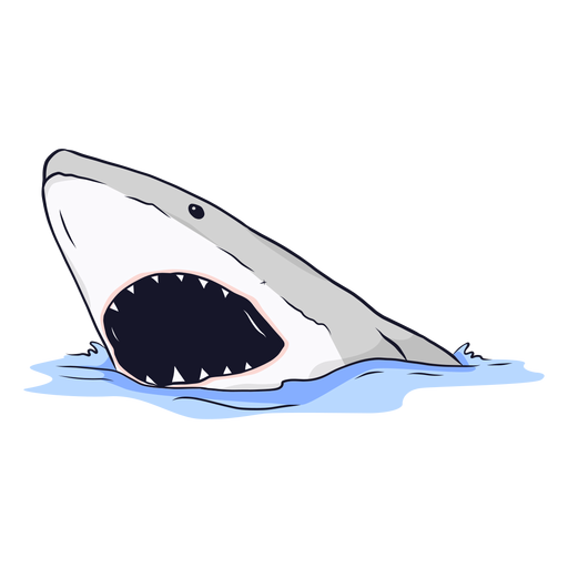 Vector sharks surfing. Shark mouth jaw tooth