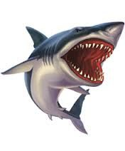 Sharks clipart megalodon. Pictures of the giant