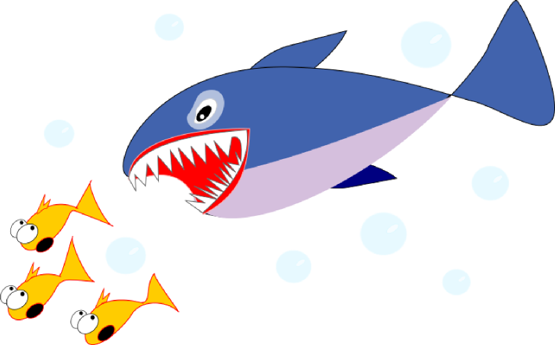 baby shark clipart simple