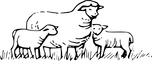 Sheep clipart three. Standing clip art at