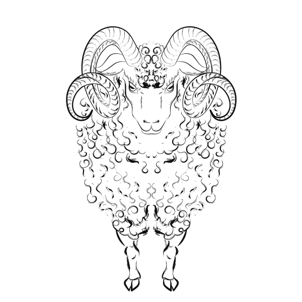 Sheep with long wool locks and long curved horns. Vector illustration