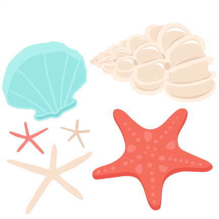 Seashell clipart png. Conch shell at getdrawings