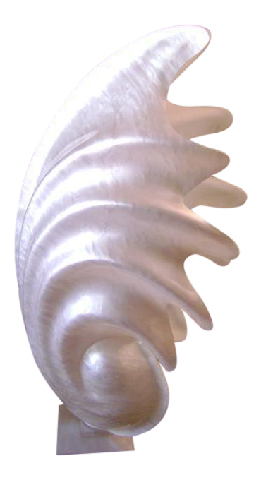 Shell transparent pearlescent. Acrylic clam lamp chairish