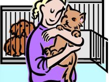 Shelter clipart. Animal clip art space
