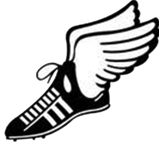 track and field shoe wings png