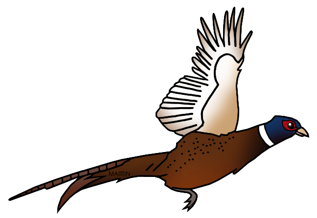 Shooting drawing pheasant. Clip art others transprent