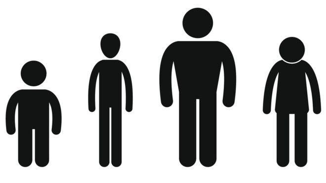 Short clipart average height. Dutch men revealed as