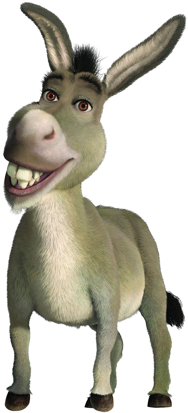 Shrek donkey png. Picture web icons download