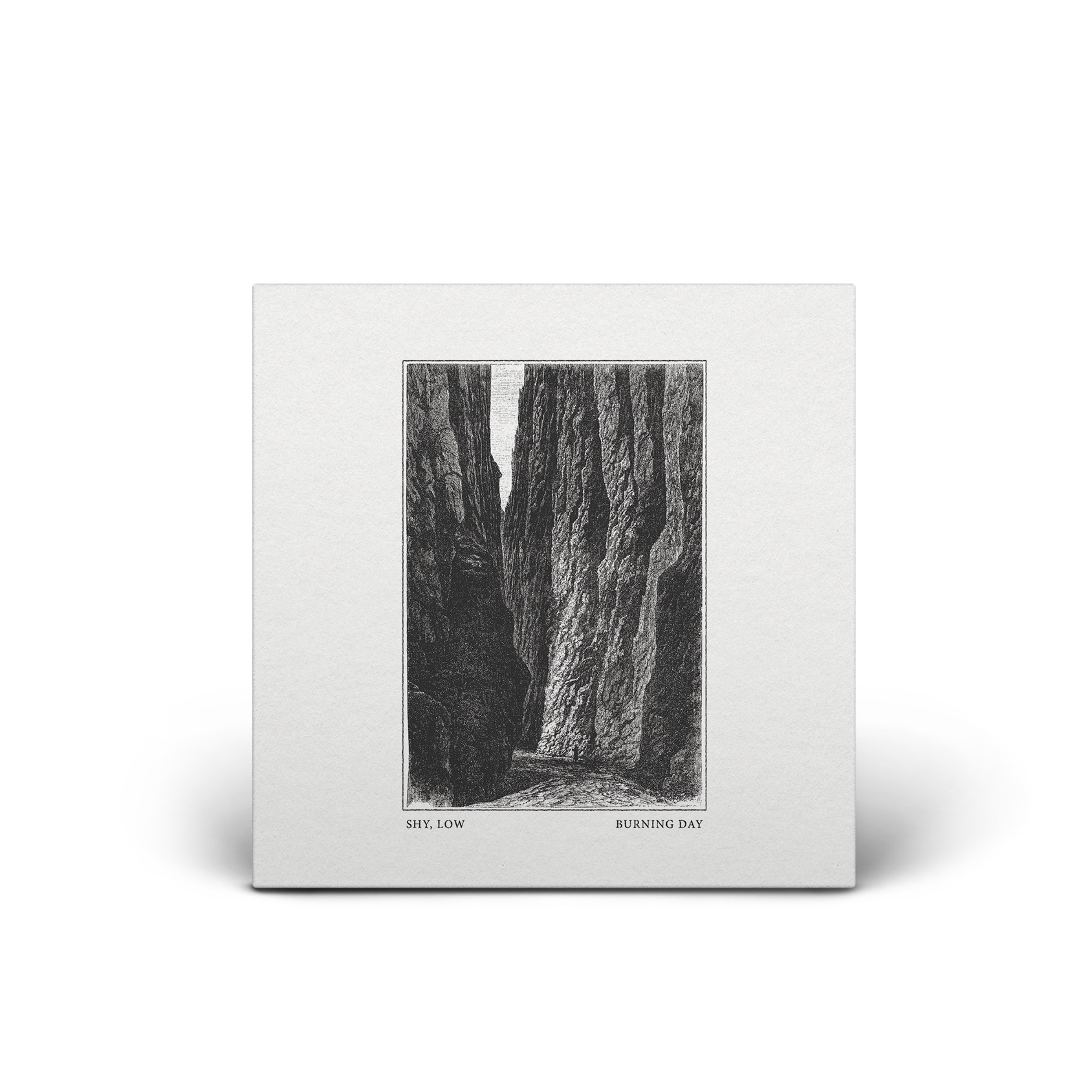 Shy drawing black and white. Low burning day ep