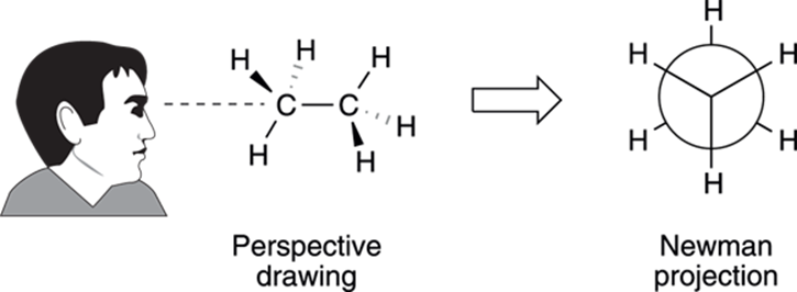 Sighting drawing perspective. Alkanes hydrocarbons organic chemistry