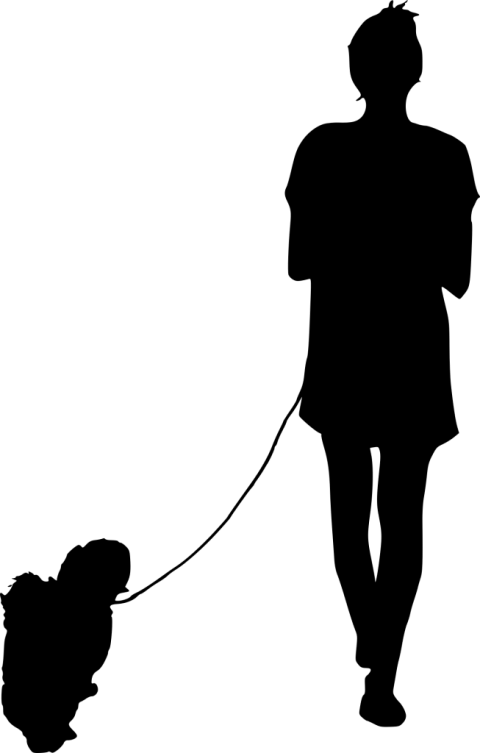 Silhouette png walking. Dog free images toppng