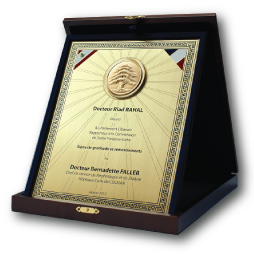 Silver plaque png. Plated awards showcase a