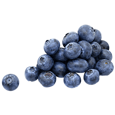Single blueberry png. Blueberries transparent images stickpng