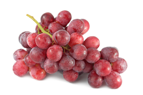 Single grape png. Grapes white background images