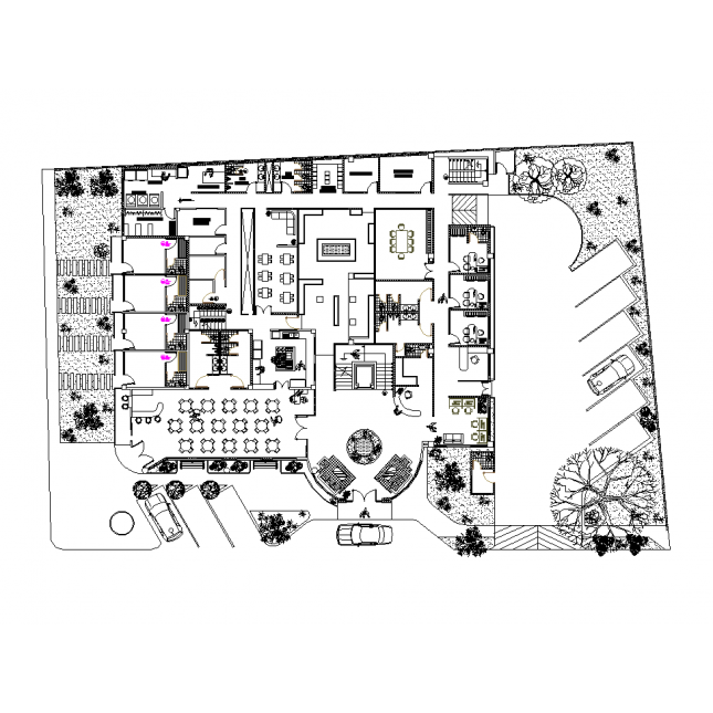 Site drawing cad. D star hotel