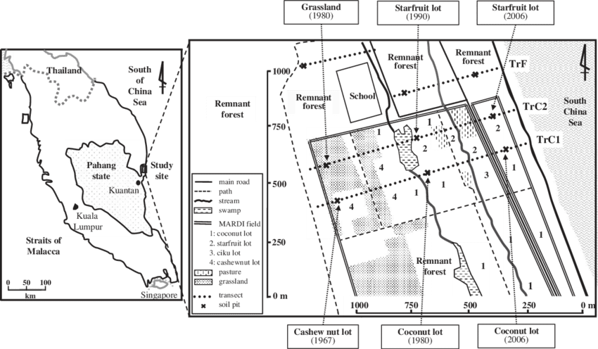 Site drawing lot. Map of the study